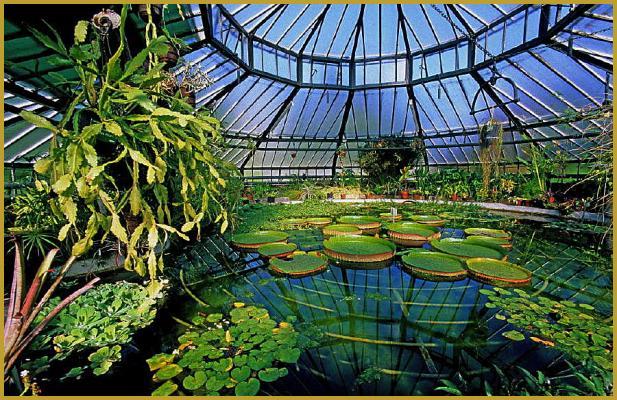 Photos de la neustadt dans le quartier allemand de strasbourg jardin botanique quartier - Jardin botanique de strasbourg ...
