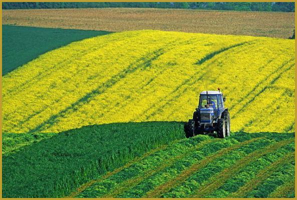 Photos de agriculture alsace - Chambre d agriculture d alsace ...