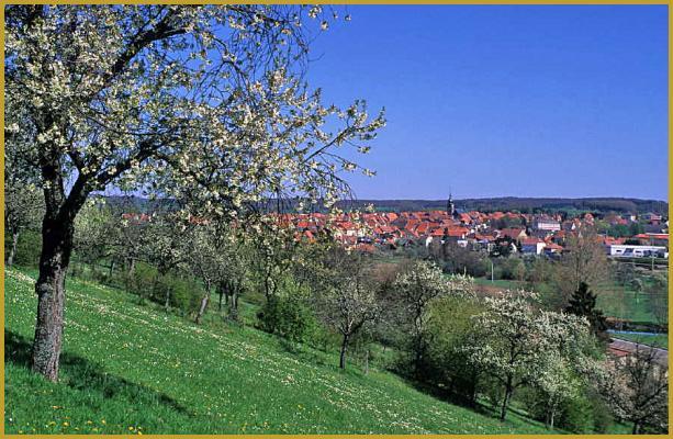 niedersteinbach cheval blanc elsass